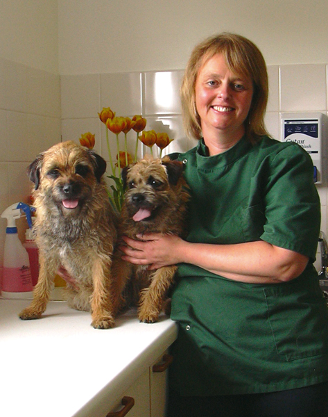 Moloney Veterinary Clinics Dunmow and Takeley Staff